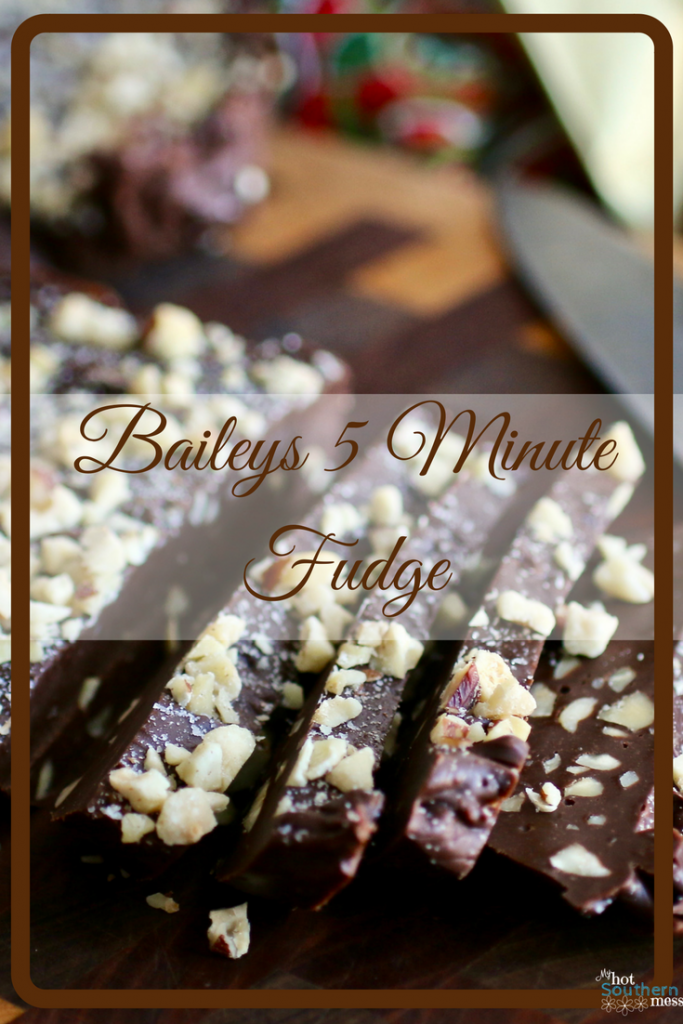 Baileys 5 Minute Fudge | My Hot Southern Mess