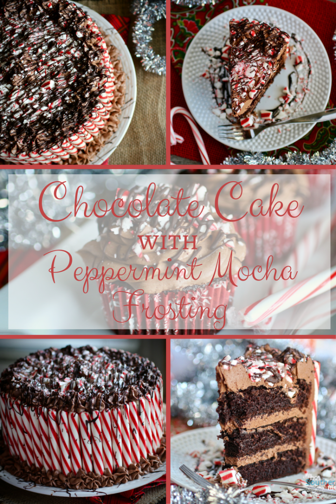 Chocolate Cake with Peppermint Mocha Frosting | My Hot Southern Mess