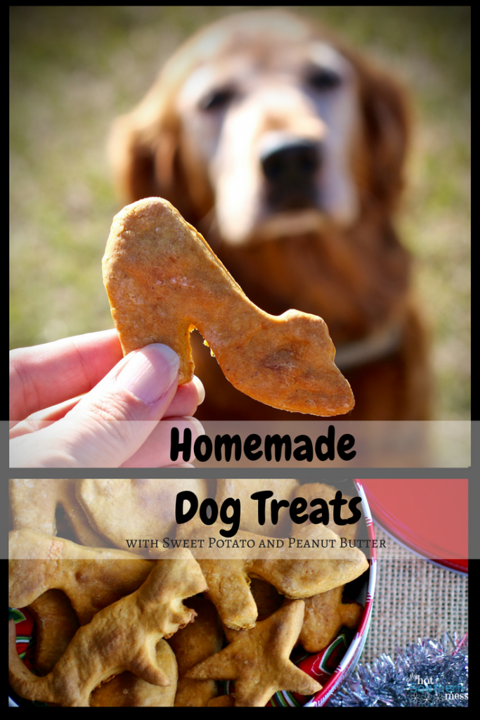 Homemade Dog Food Recipes For Older Dogs