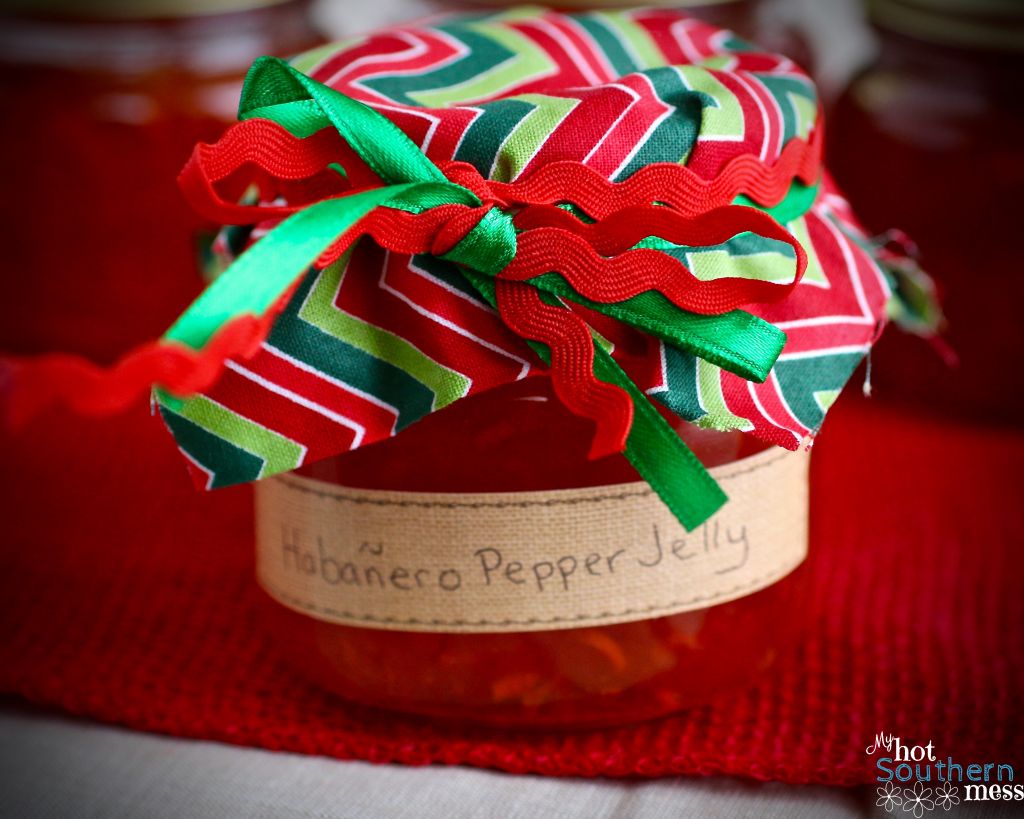 Habanero Pepper Jelly | My Hot Southern Mess