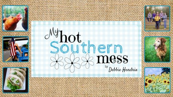My Hot Southern Mess